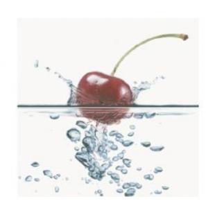 Декор Opoczno Water Sparkles inserto cherry 59,4×60