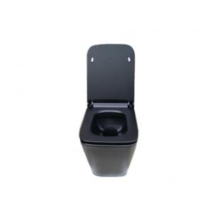 Унитаз подвесной Newarc Aqua 9423B-M + сидение с крышкой Duroplast SoftClose
