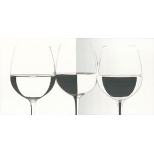 Декор Paradyz Vivida Vine bianco 30x60 PRZ25009